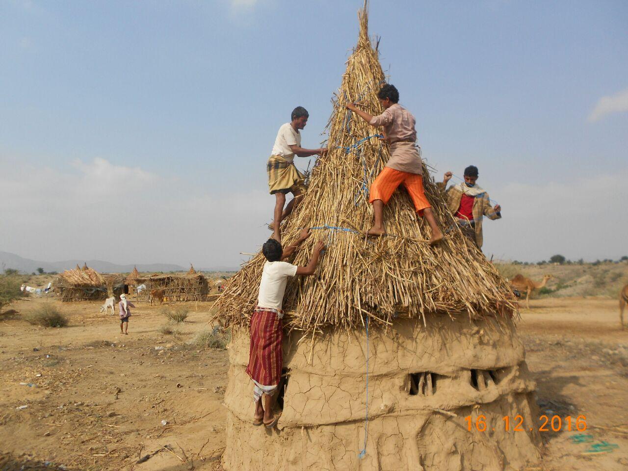 الصندوق ينجح في نسج علاقة متينة بين التنمية والمجتمع