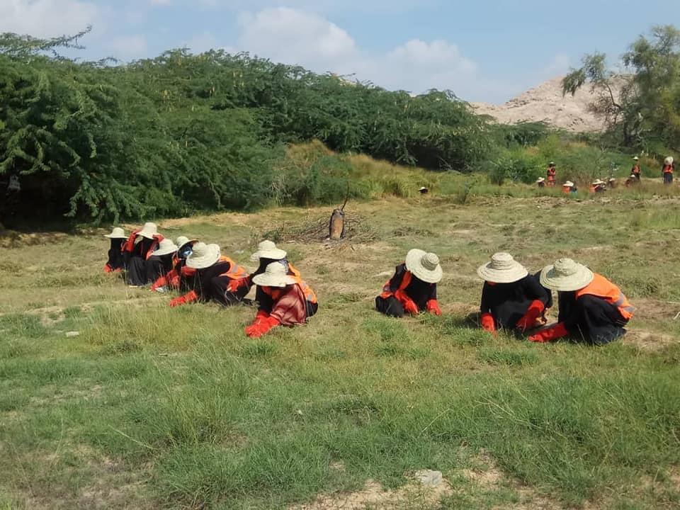 تدشين مشروع لحماية المرأة أثناء الأزمات في حضرموت