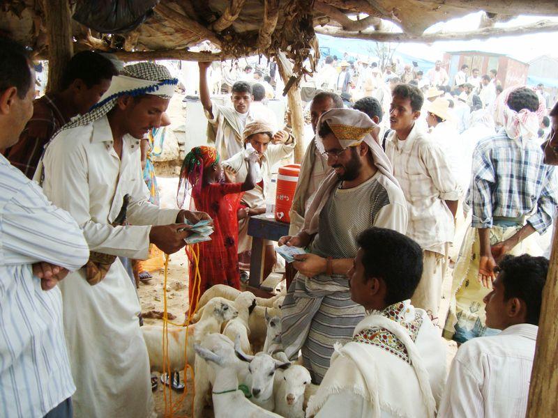 المجموعات الإنتاجية الريفية