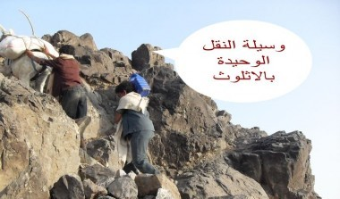 Wesab Alali_Dhamar