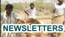SFD Newsletters